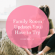 Family Room Updates You Have to Try