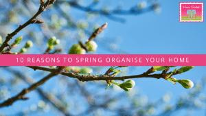 spring organise